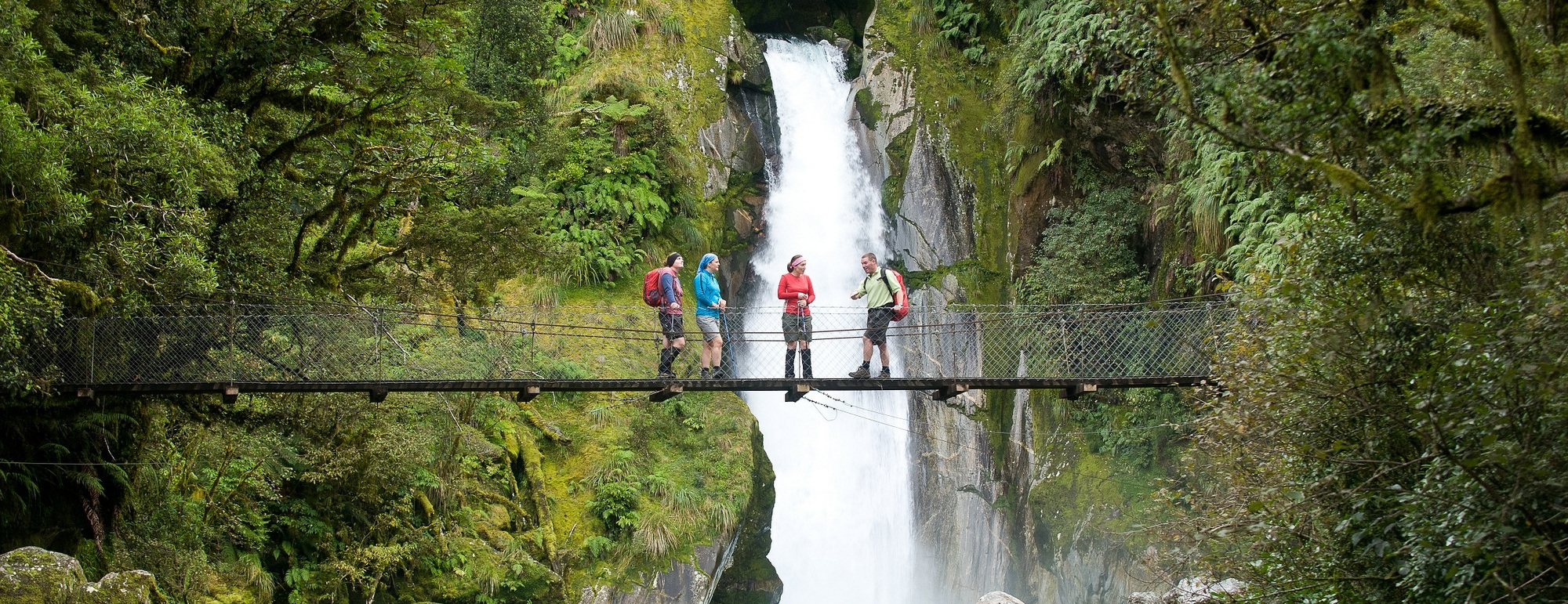 Milford Track 1/2 Day Walk & Boat Cruise